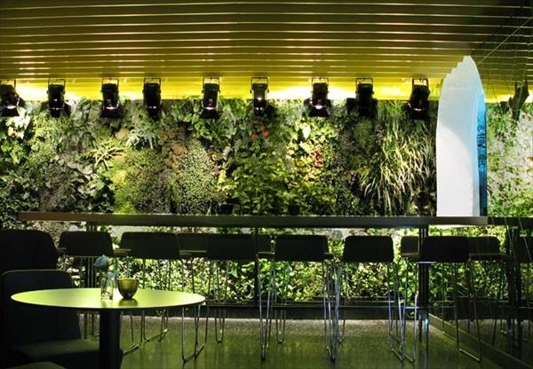Inexpensive indoor gardening ideas