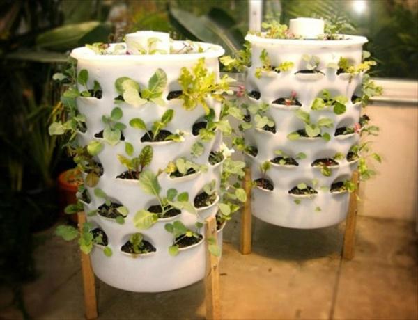 DIY indoor gardening ideas