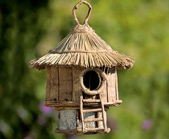 10 creative diy birdhouse ideas easy diy and crafts for How to make homemade bird houses
