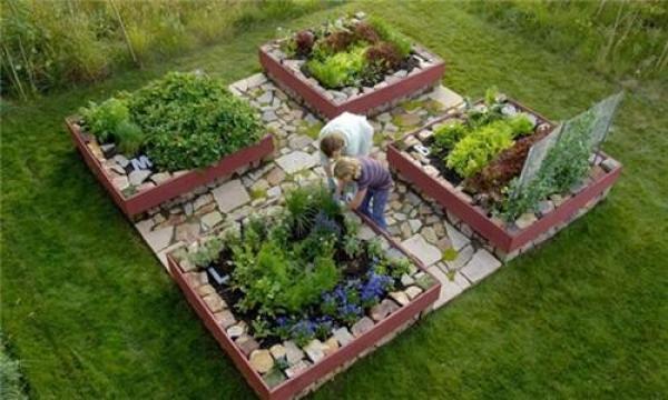 DIY home fruits gardens