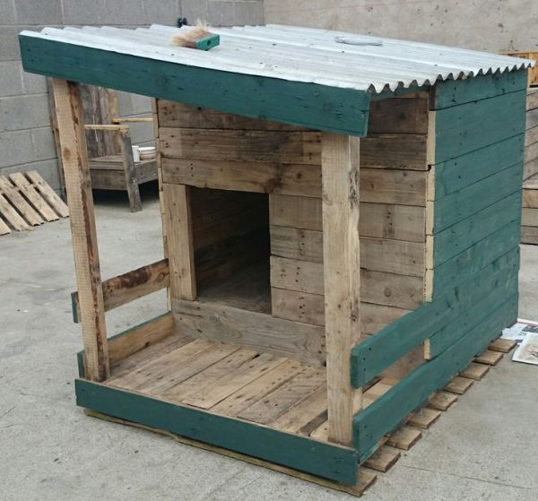 building a pallet house