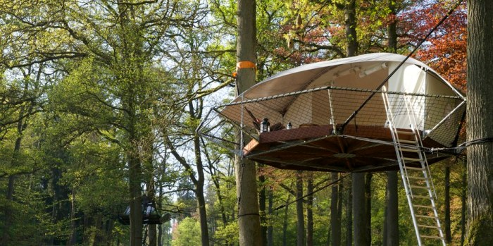 multipurpose treehouse
