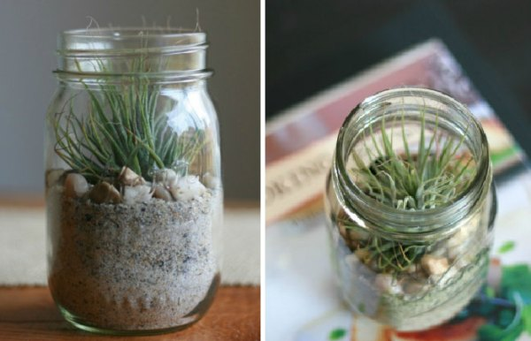 DIY Plant Jar