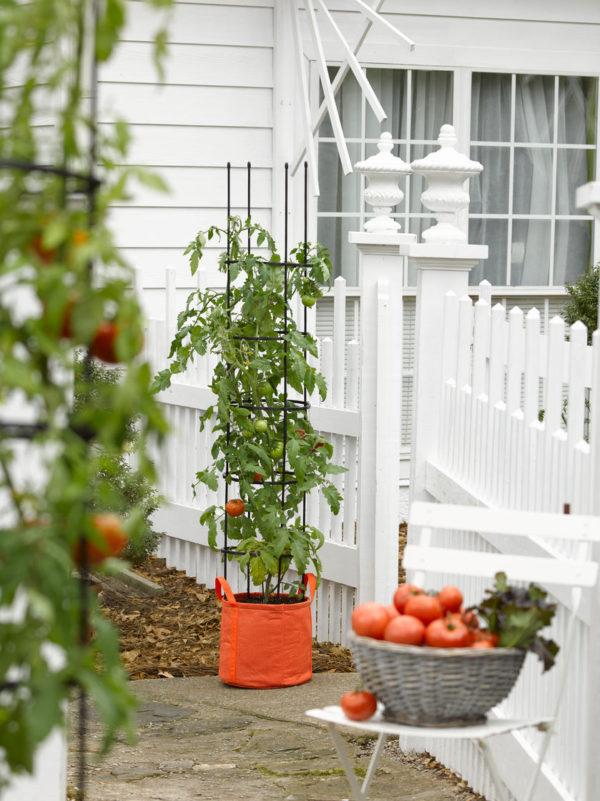 cool gardening ideas
