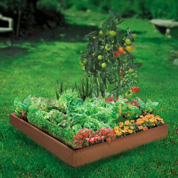 start growing indoor gardens
