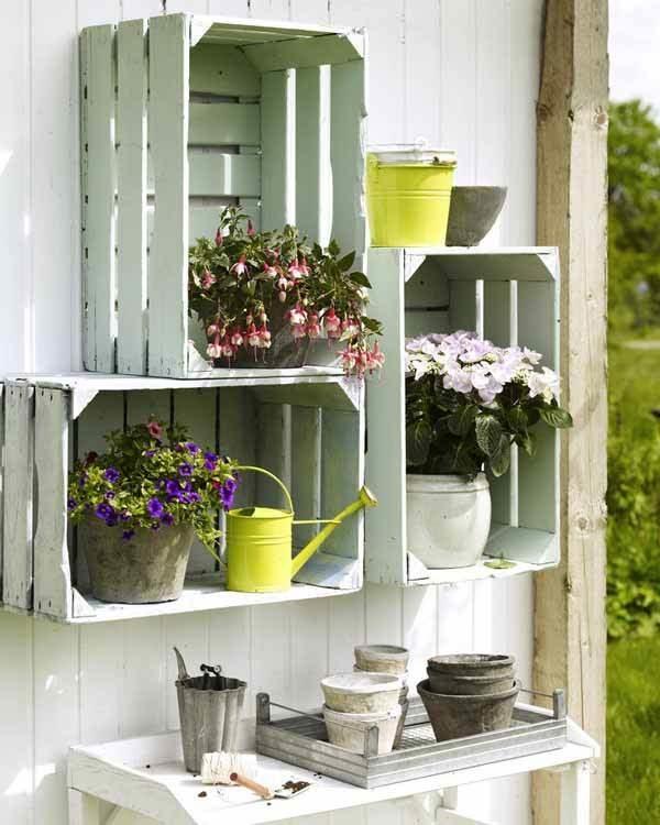 diy mini home gardens
