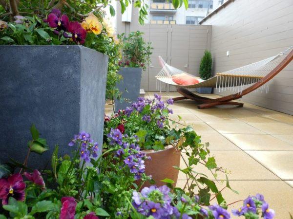 mini terrace garden