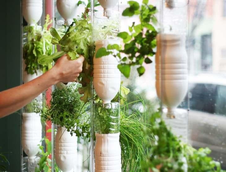 best DIY plastic planter
