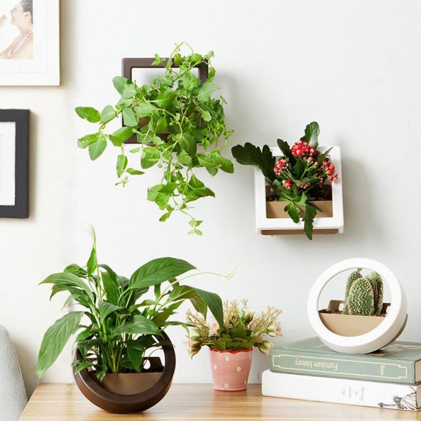 diy wall mounted hanging planters
