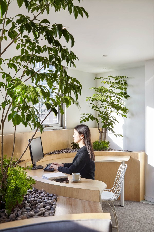 HOW TO GO GREEN IN YOUR OFFICE