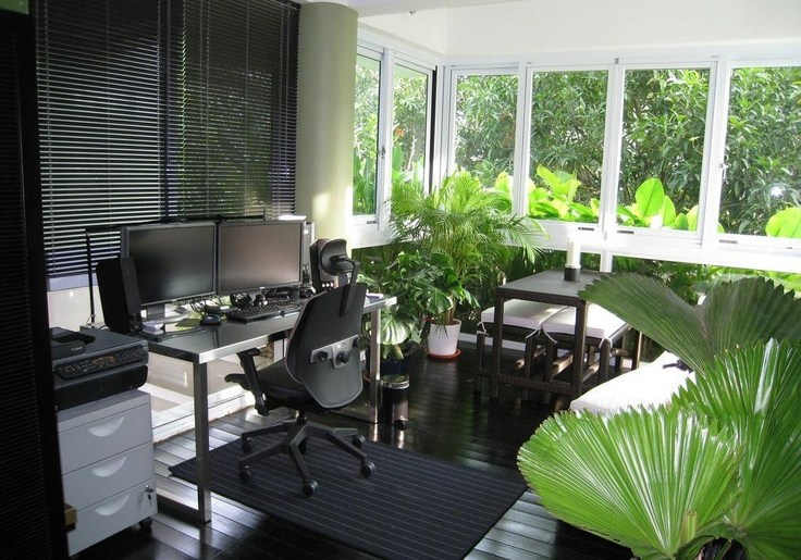 bring nature vitality in your office