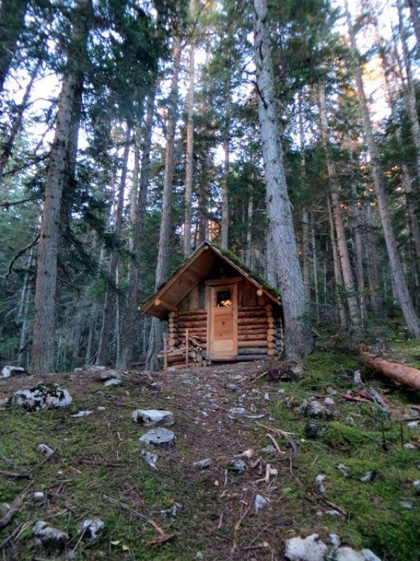 wood storage shed diy
