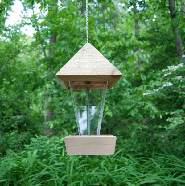 diy bird gift