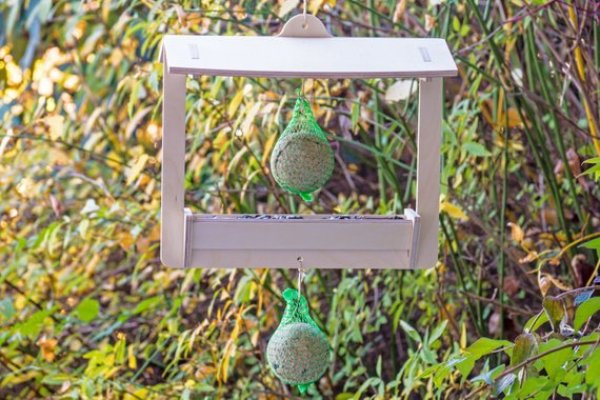 easy bird feeder diy ideas