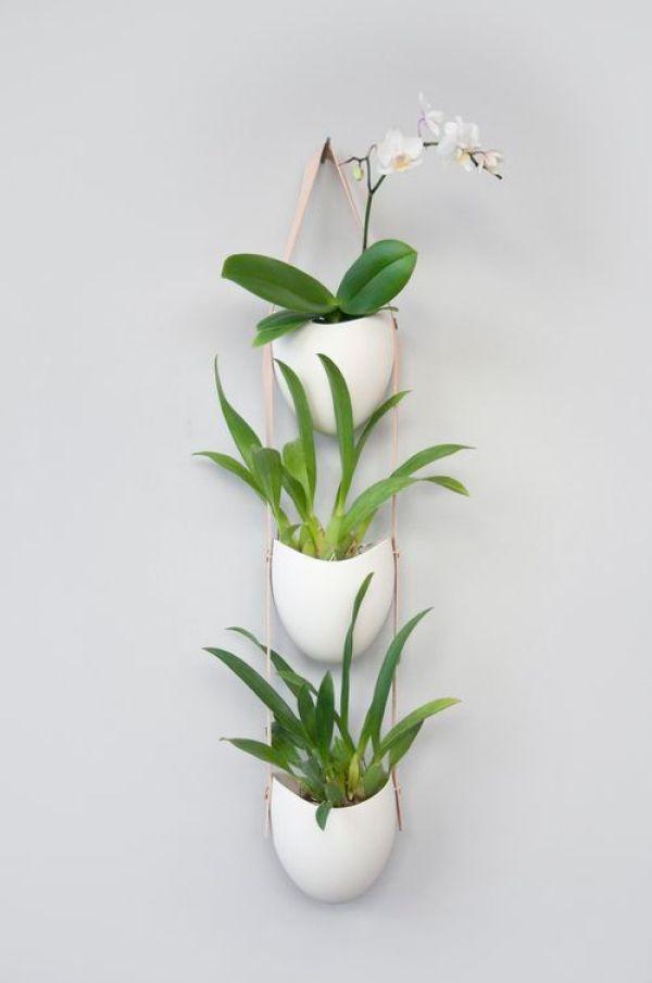 INDOOR CERAMIC PLANTS IDEAS