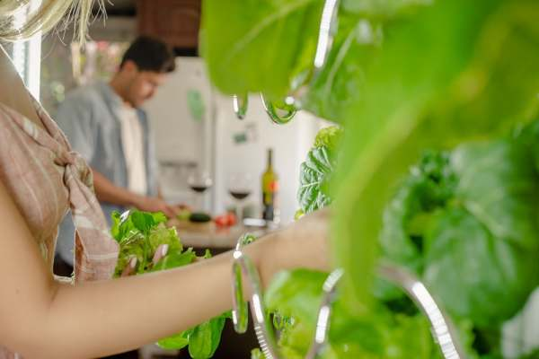 grow fruits and veg indoor