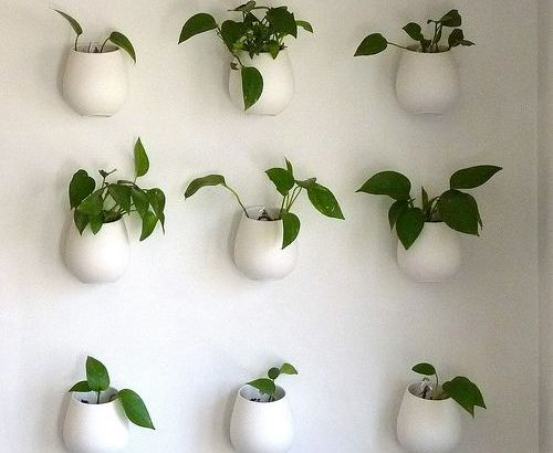 space saving indoor gardens