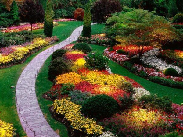 1- DIY Gardening Idea - Colorful Plantings