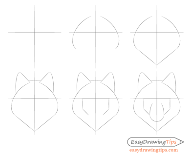 Wolf basic face shape step by step drawing