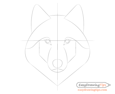 Wolf facial features placement drawing