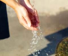 does zero water remove pestcide