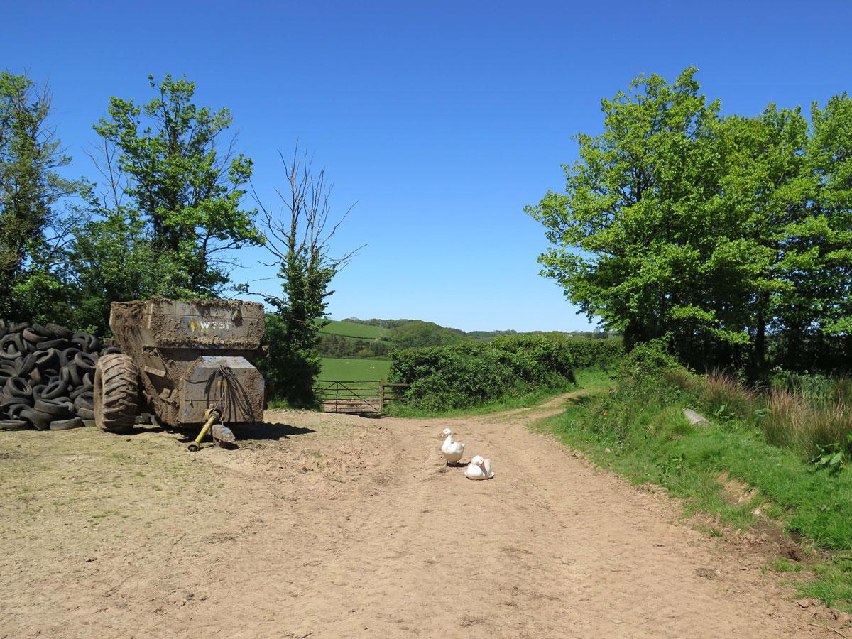 The Farm Trail