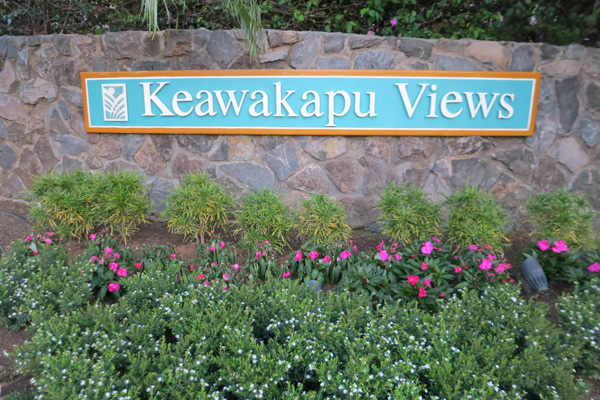 keawakapu views homes for sale kihei