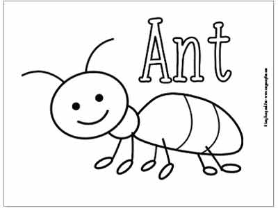 bug coloring page # 6