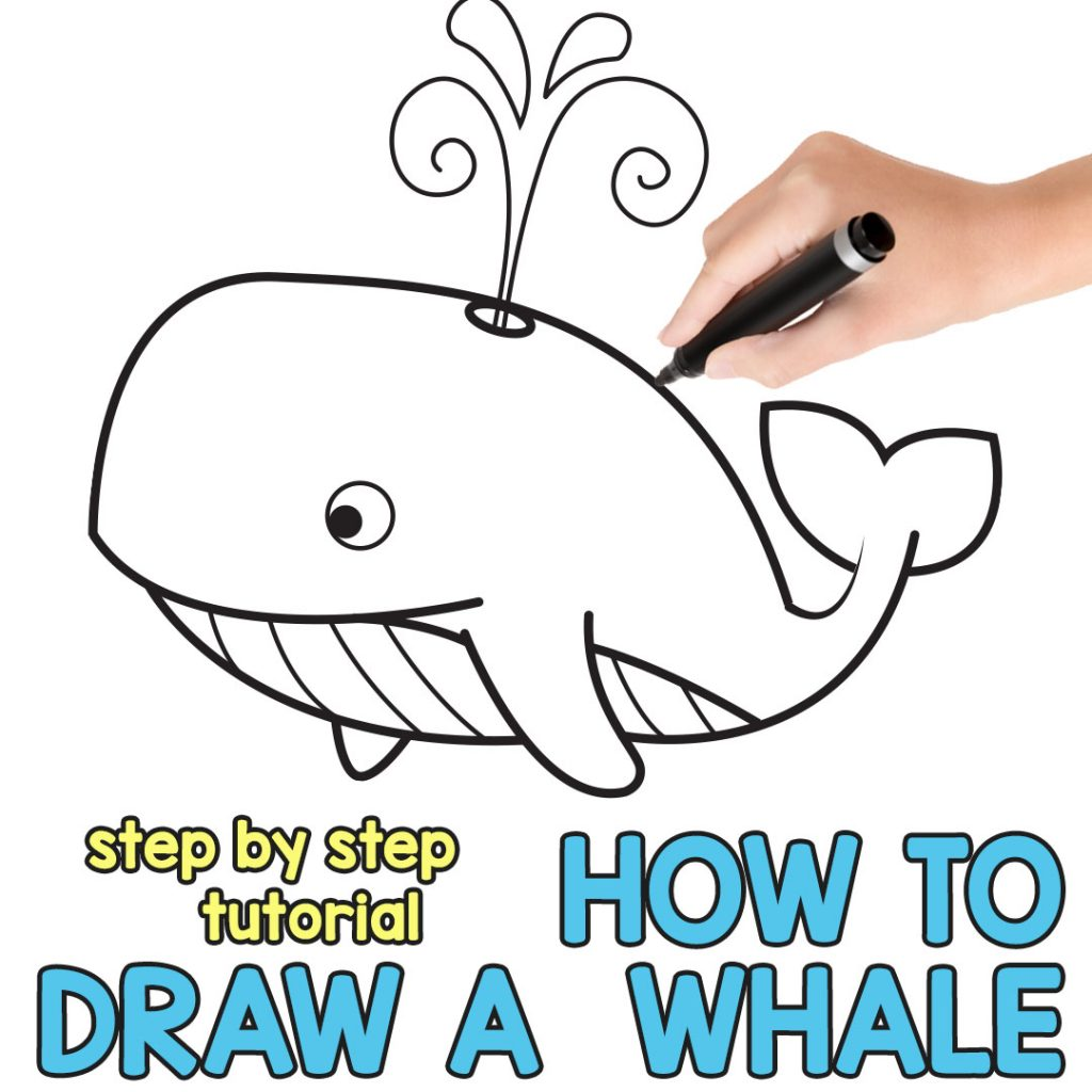 How To Draw A Whale Step By Step Cartoon Style