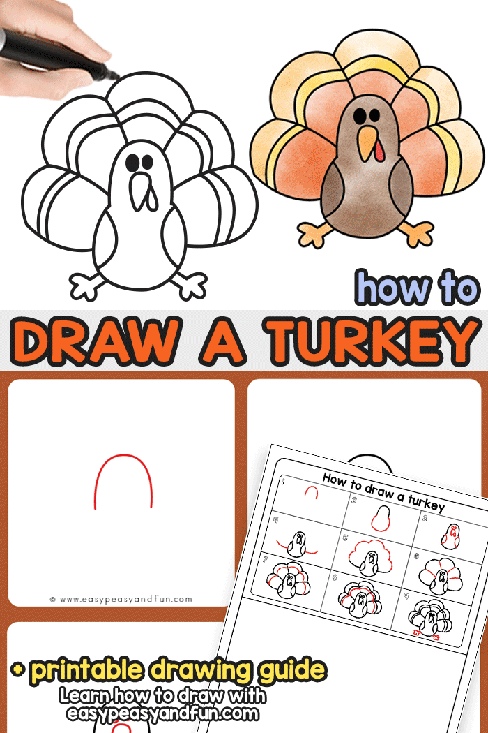 How To Draw A Turkey Easy Peasy And Fun