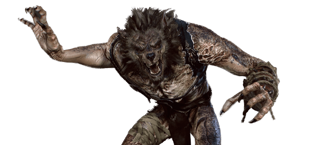 Werwolf aus dem Witcher Universum