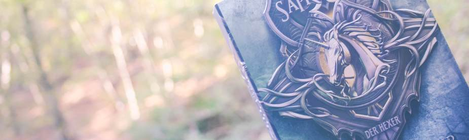 Zeit der Verachung von Andrzej Sapkowski in der Buchreihenfolge