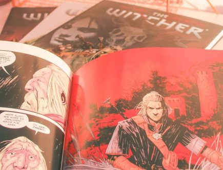 The Witcher Comics Trenner
