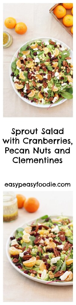 How do you prefer your sprouts? Boiled? Steamed? Roasted? Pan-fried? Or something else? How about not cooking your sprouts at all this year and trying them raw in a salad – like this delicious Sprout Salad with Cranberries, Pecan nuts and Clementines?