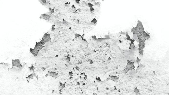 Rivestire i Muri con Polistirene e Cartongesso come Barriera