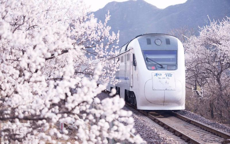 tour China by high speed train