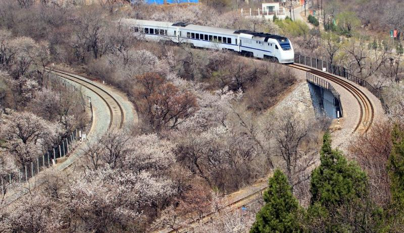 travel in China by train