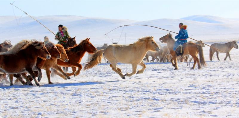 Hulunbuir Prairie Winter