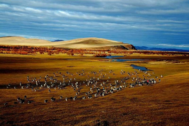 Hulunbuir Prairie Autumn
