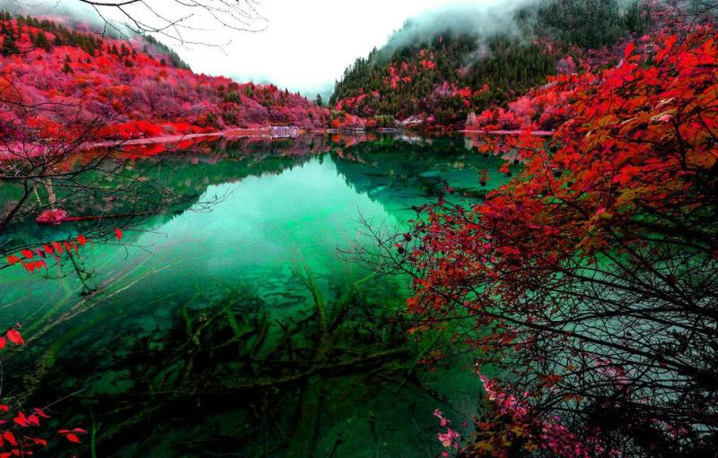 Trips to Jiuzhaigou in autumn