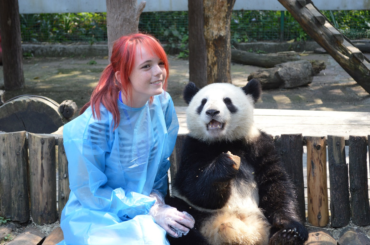 Bea Panda Volunteer