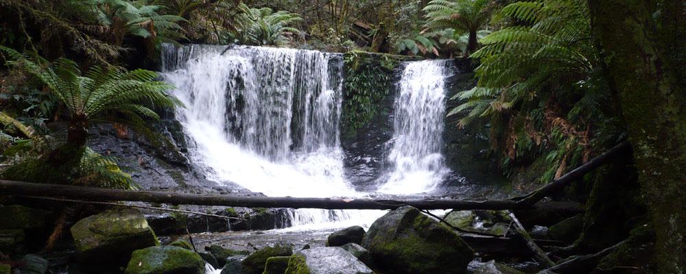 Horseshoe Falls - North of Hobart