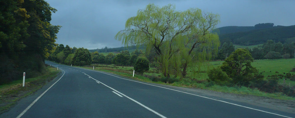 Driving between St Helens and Launceston