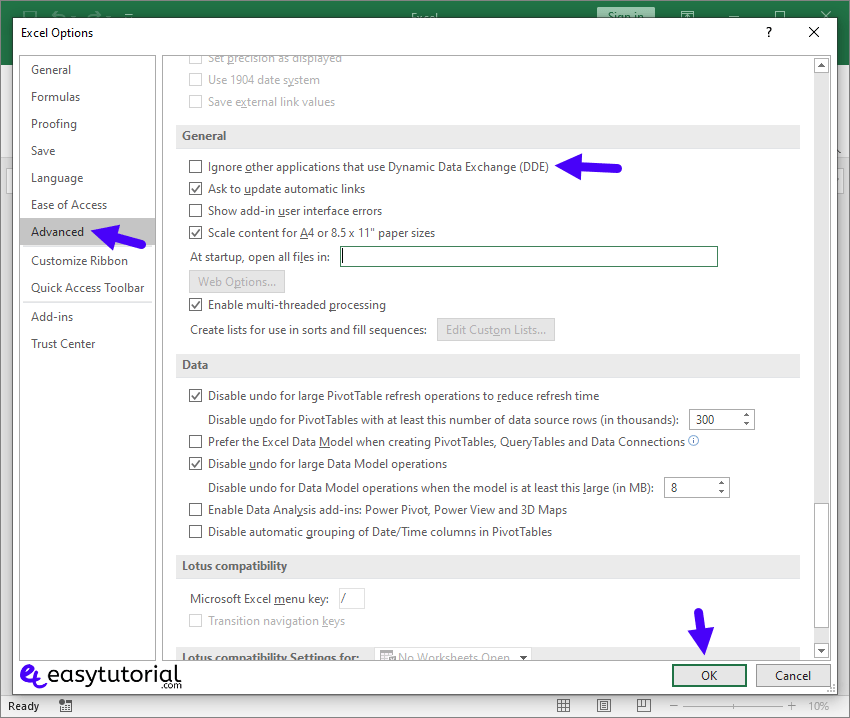 Fix There Was A Program Sending The Command To The Program 7 Excel Options Advanced