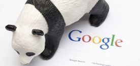 Comment référencer votre site après Google Panda !