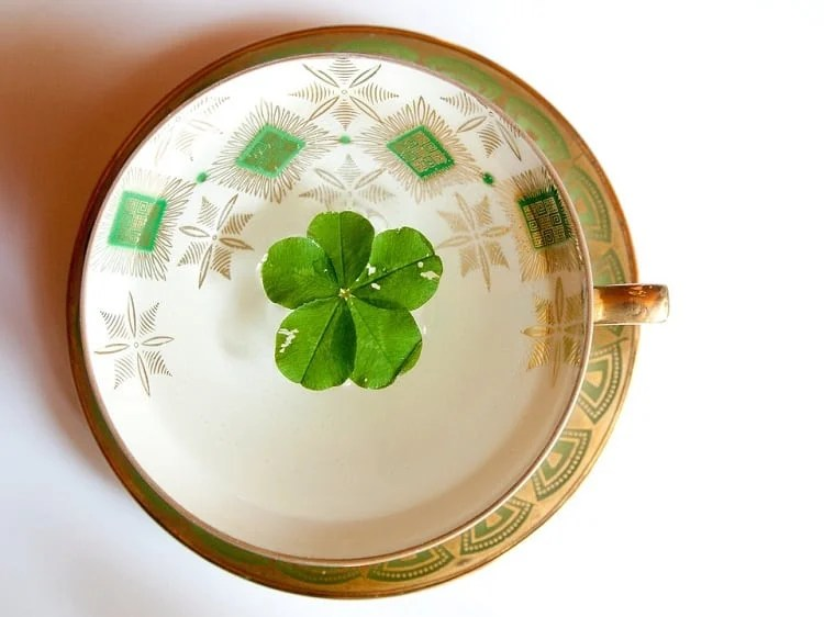 14 Easy Ways To Bring Good Luck In The House