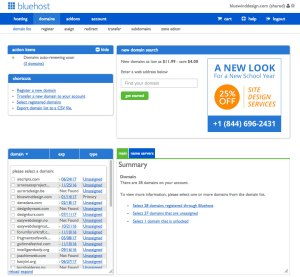 Bluehost Domain Manager section