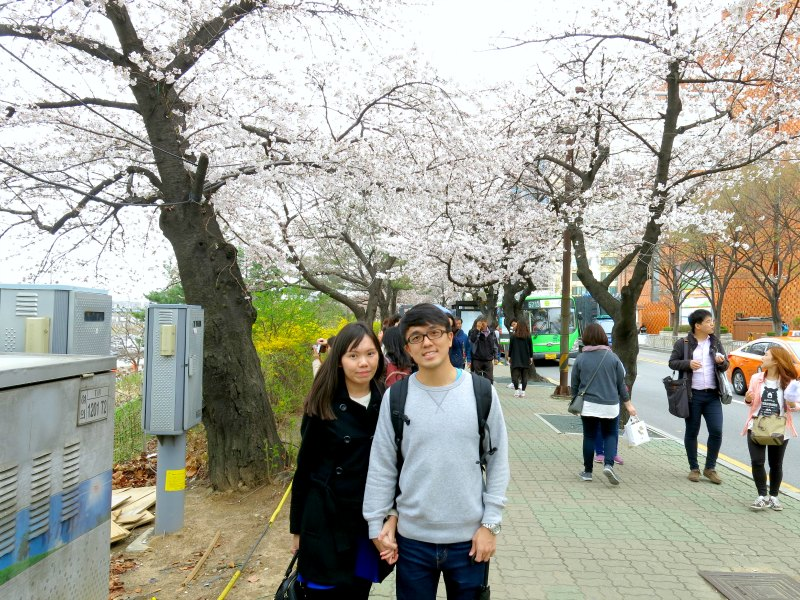 Evan and Raevian under Cherry Blossom Trees