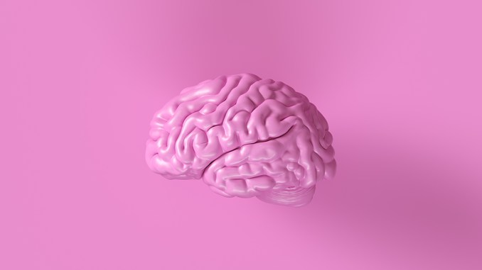 Metabolic Syndrome And The Brain