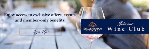 stellenbosch vineyards special offers sonia cabano blog eatdrinkcapetown
